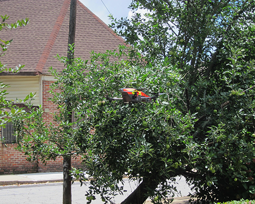 Drone with Pear Tree from a Distance